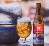 new-belgium-brewery-company